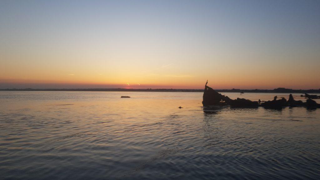 SUP - Stand Up Paddleboard - River Blackwater - Marconi Sailing Club